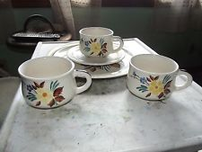 Red Wing pottery 5 floral deocrated dinnerware pieces